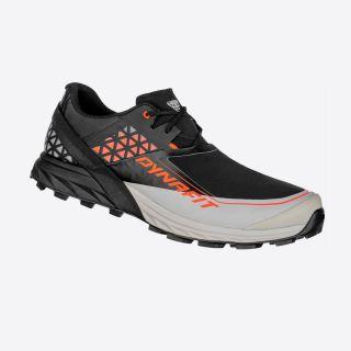 Alpine DNA running shoe