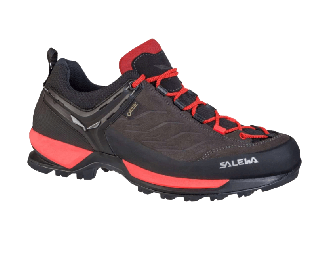 Salewa ws mtn trainer shoes