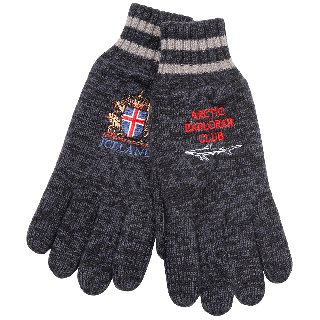 Thor gloves with embroidery