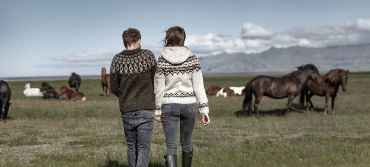 """Iceland Sheep Roundup """"Réttir"""" Is an Annual Sheep Gathering Party"""